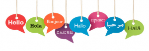 7 Steps to Learning a Language