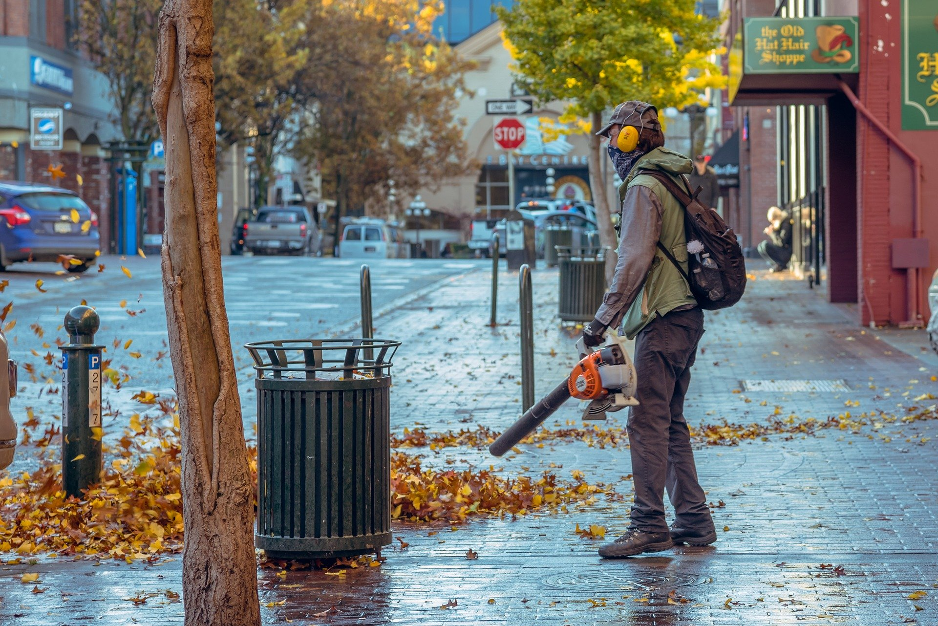An Ultimate Guide To Picking The Best Cordless Leaf Blower!
