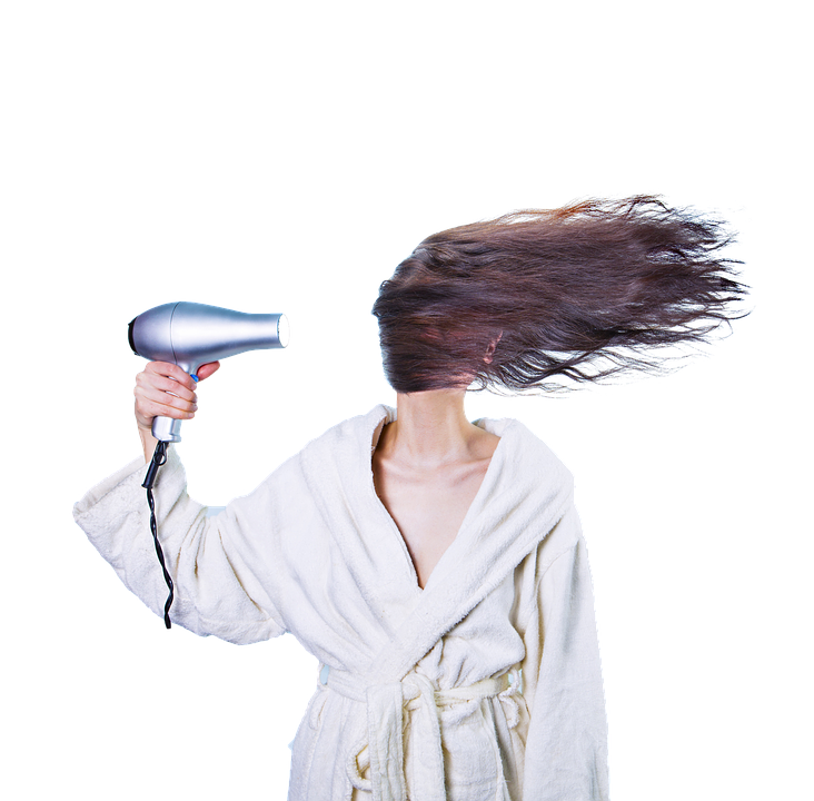 How To Find A Perfect Hair Dryer For Your Pet?