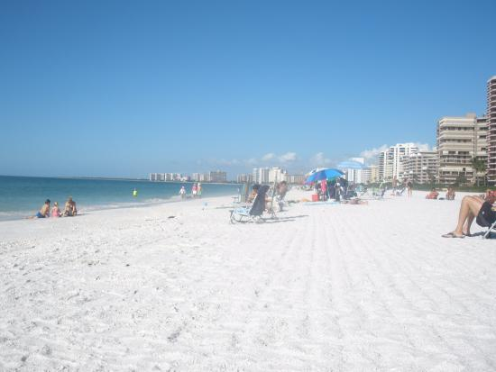4 Best Things To Do In Marco Island (Fl)