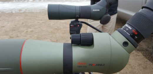 Valuable Tips For Using Spotting Scope Any Hunter Must Know